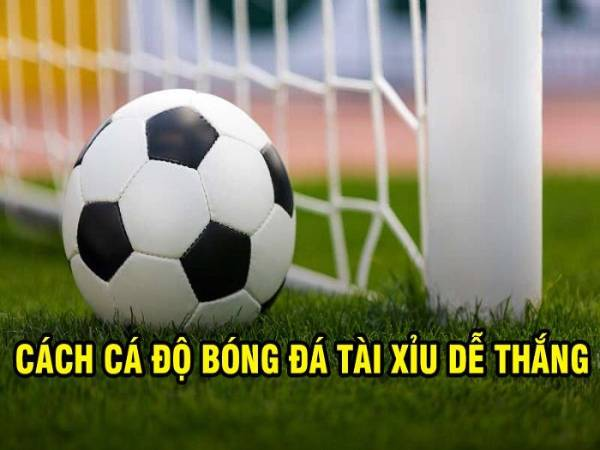 huong-dan-cach-danh-tai-xiu-bong-da-de-hieu-de-choi